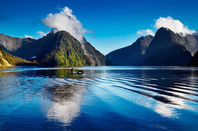 последние картинки новой зеландии достопримечательности можете скачать